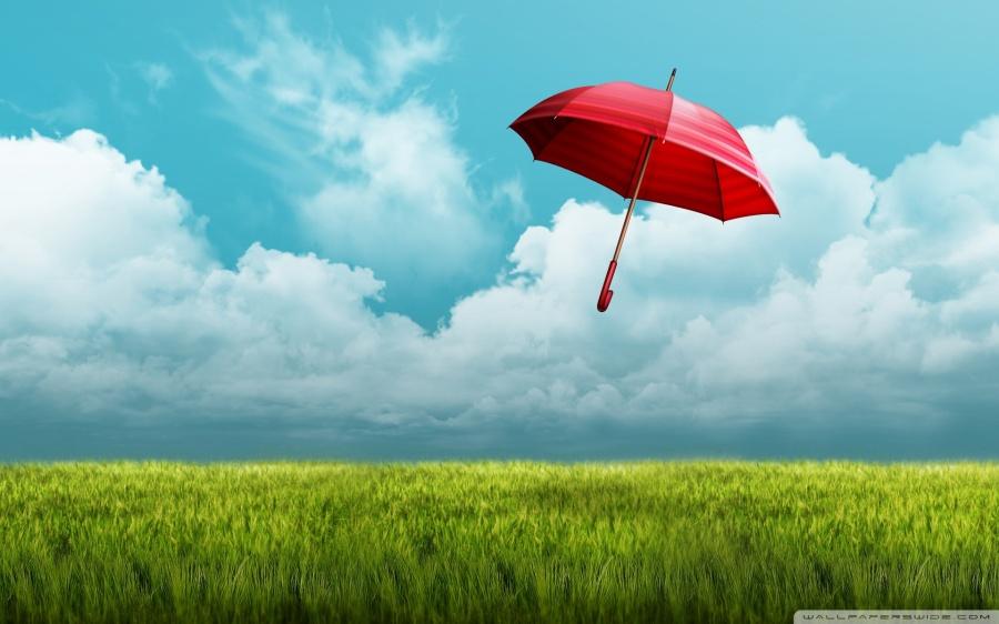 走出公職安全傘,天高地闊心更寬